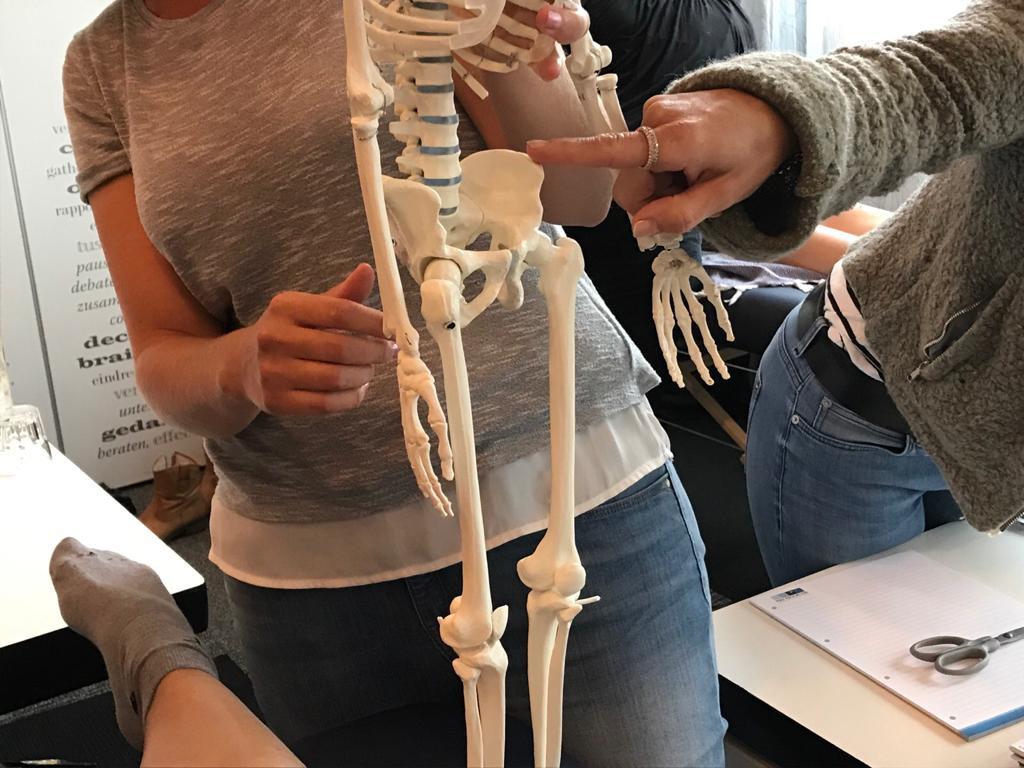 Manuele technieken bij bekkenpijn en posturale disfuncties